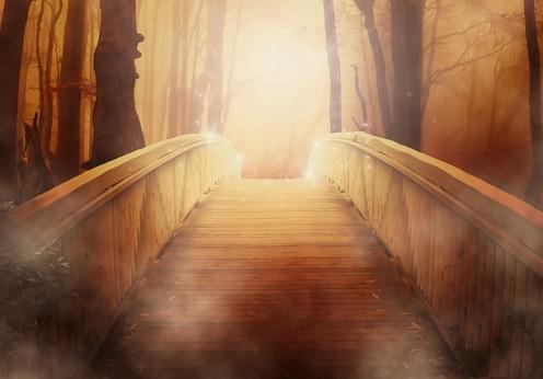 mission de vie, chemin de vie, âme, équinoxe, septembre, nouvelle lune