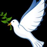 La colombe et les flocons